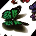 Tatouage ephemere papillon multicouleur 3D