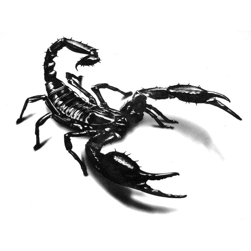 tatouage temporaire scorpion tempo tattoo. Black Bedroom Furniture Sets. Home Design Ideas
