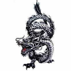 Tatouage-ephemere-dragon